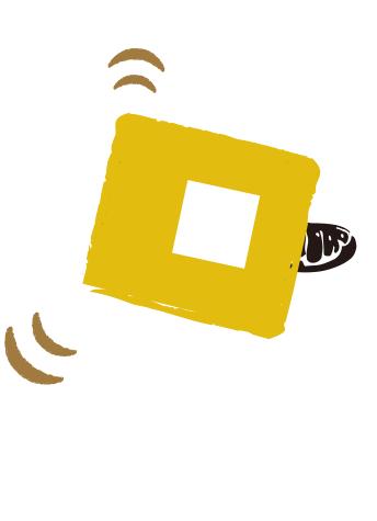 ふりかけちょい虫 コオロギラーメン